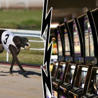 Bill to split slots and dog races