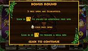 Slots Bonus Round